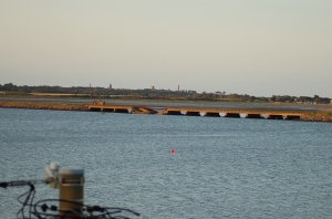 The railway bridge at the Broadmeadow estuary